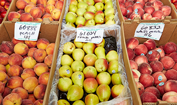 Clsoe up of different colorful fruits like pears.